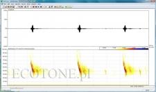 Pettersson BATSOUND - v.4.0, spectrogram software